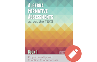 Algebra Formative Assessment