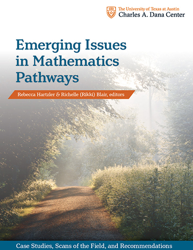 Emerging Issues Book Cover