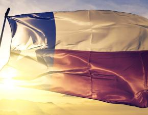 The Texas flag flies in the wind with the sun in the background.